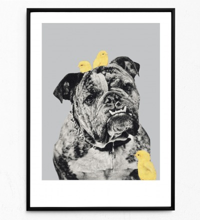 Collage Bulldog Poster Collageposter Kunstdruck Tierposter