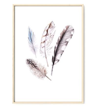Federn Poster Kunstdruck - Buntstiftzeichnung Reproduktion