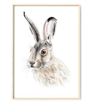 Zeichnung Hase, Poster, Kunstdruck, A4