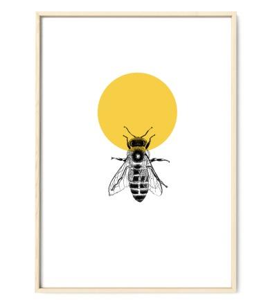 Honigbiene Poster Kunstdruck Zeichnung Mischtechnik Reproduktion