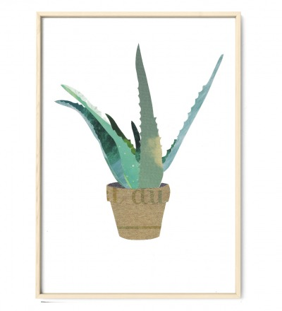 Aloevera Collage Poster Kunstdruck DIN A3