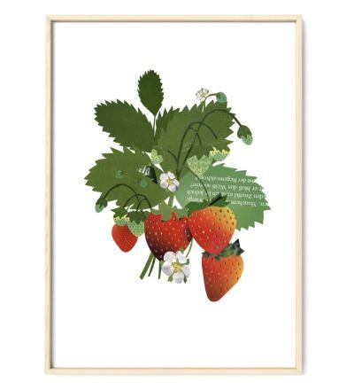 Collage Erdbeerpflanze Poster Kunstdruck Pflanzenposter - Collage Erdbeerpflanze