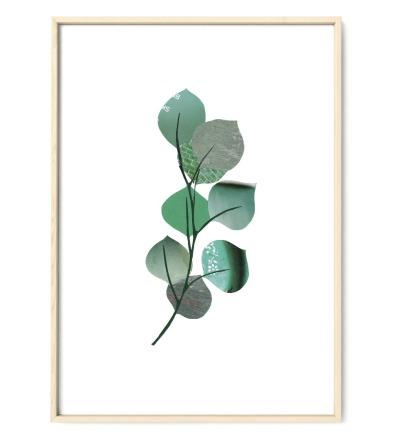 Collage Eukalyptus Kunstdruck Pflanzenposter - Collage