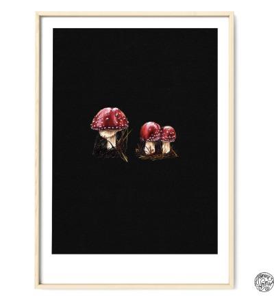 Fliegenpilze auf Schwarz Poster Kunstdruck Pflanzen