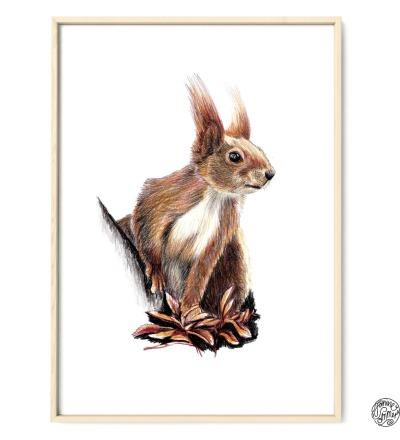Eichhörnchen Poster Kunstdruck Eichhörnchenzeichnung Buntstiftzeichnung Reproduktion
