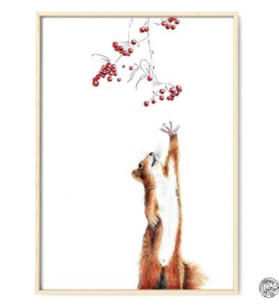 Eichhörnchen Poster Kunstdruck DIN A4 Buntstiftzeichnung