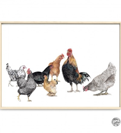 7 Hühner Poster Kunstdruck - Aquarell-Buntstiftzeichnung