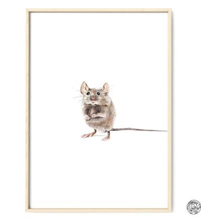 Hausmaus Poster Kunstdruck Zeichnung Maus Buntstiftzeichnung