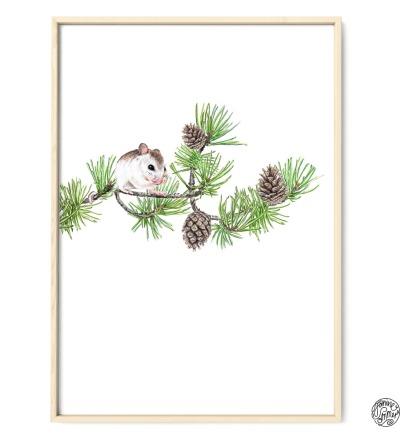 Maus auf Kiefernzweig Kunstdruck Poster Zeichnung