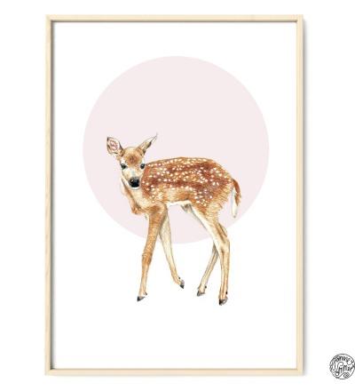 Rehkitz Poster Kunstdruck Reh Buntstiftzeichnung Reproduktion
