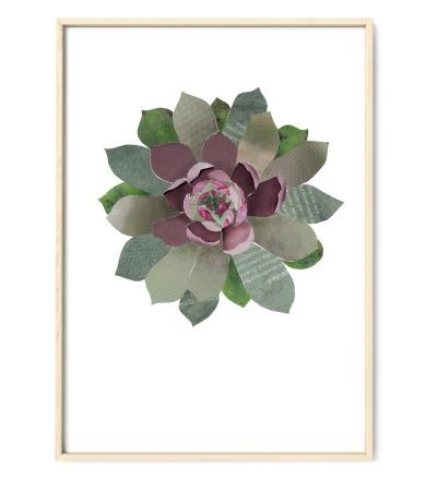 Collage Sukkulente Kunstdruck Pflanzenposter - Collage