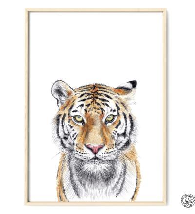 Tiger Poster Kunstdruck Tigerzeichnung Buntstiftzeichnung Reproduktion