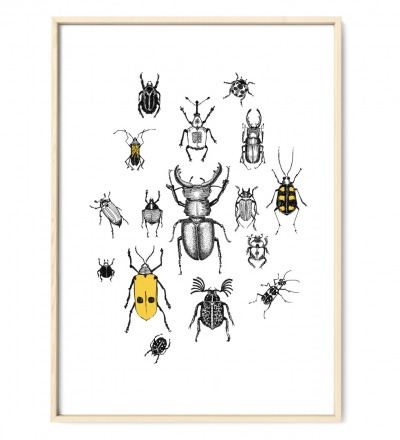 Käferparade Käfer Poster Kunstdruck A4 Insektenzeichnung