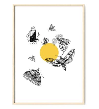 Motten fliegen zum Licht Motten Poster