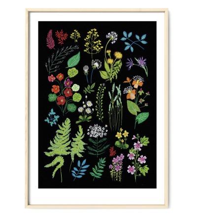 Poster Wald und Wiesenblumen