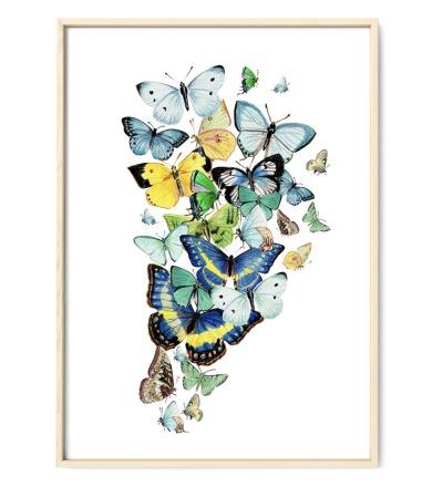 Schmetterlinge blau Poster Kunstdruck Zeichnung Buntstiftzeichnung