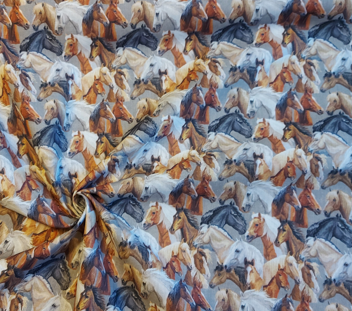 Baumwolle Pferde 2