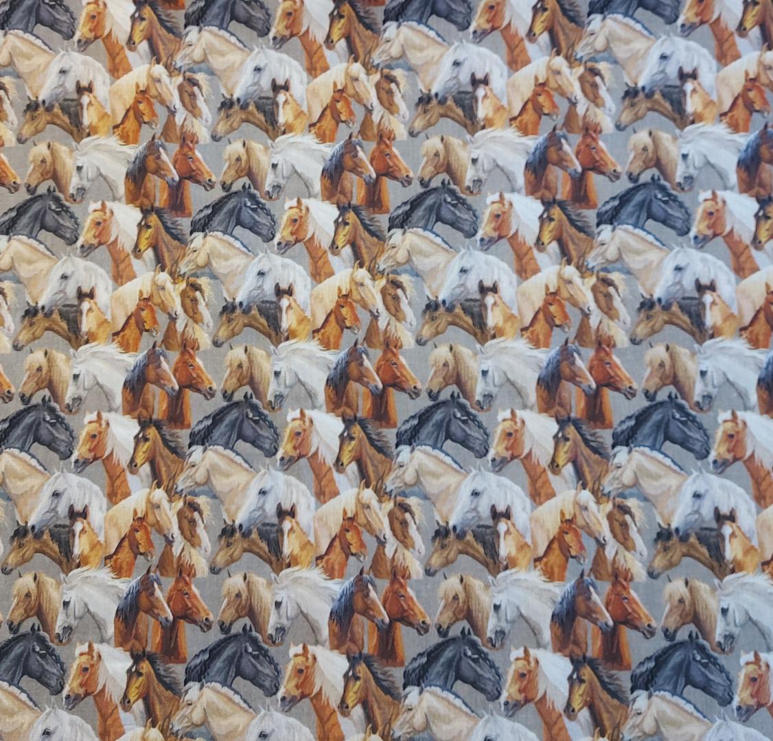 Baumwolle Pferde 3