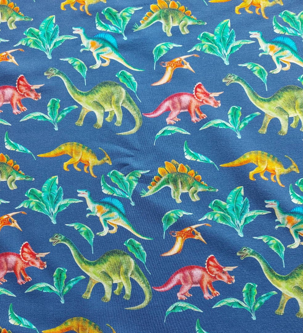 Sweat French Terry Dinos Dinosaurier 2