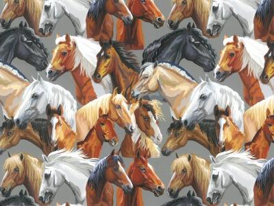 Baumwolle Pferde