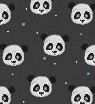 Vorbestellung EP Panda Anthrazit
