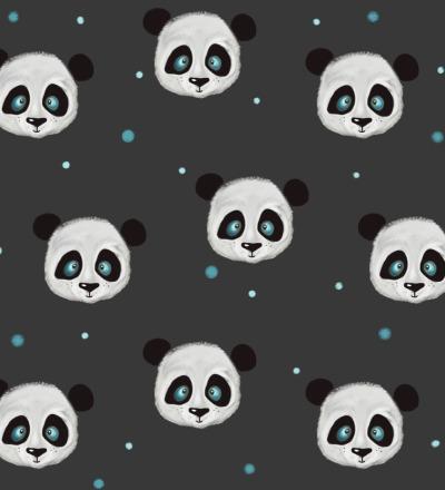 EP Crasy Panda Anthrazit RESTMETER