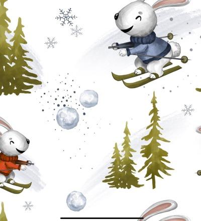 EP Ski Hase - RESTMETER