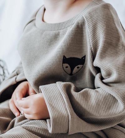 Pullover Fuchs