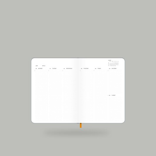 Weekly Diary 2020 Shiny Silver S - 10