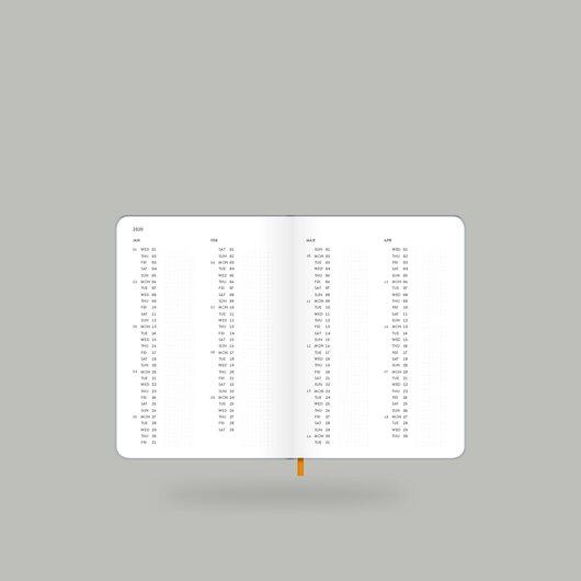 Weekly Diary 2020 Shiny Silver S - 5