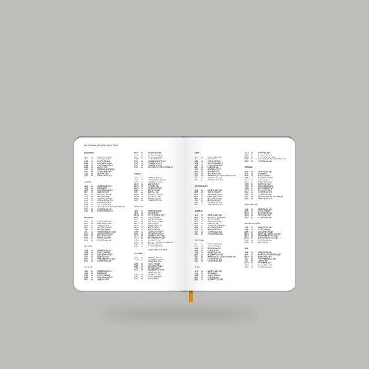Weekly Diary 2020 Shiny Silver S - 6