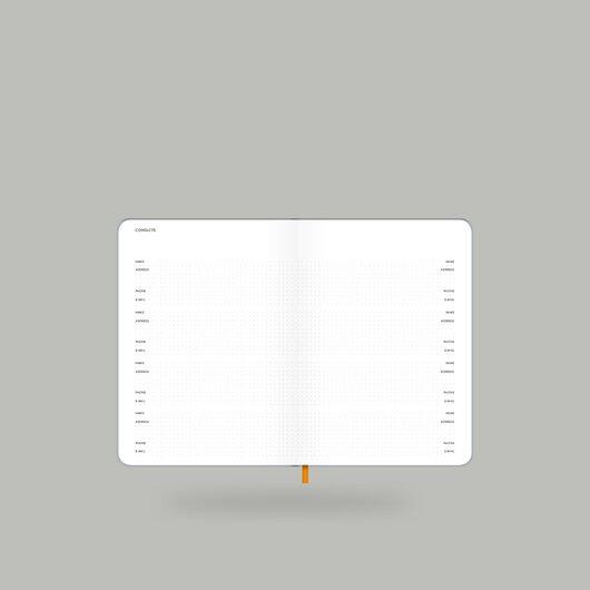 Weekly Diary 2020 Shiny Silver S