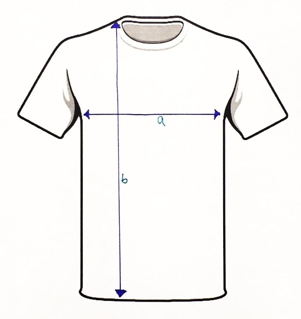 HWSD & T-Shirt 3