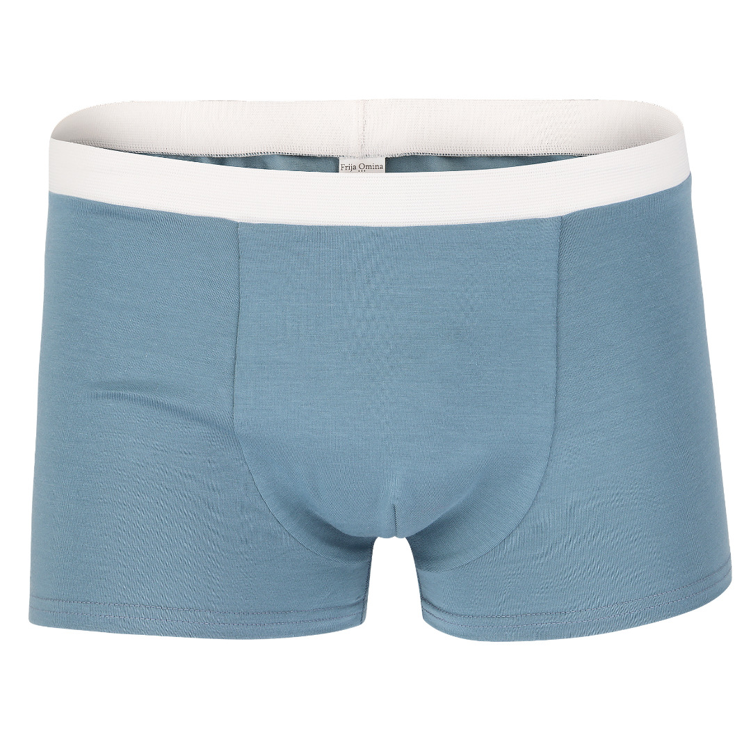 Bio Trunk Shorts Retro Shorts grau