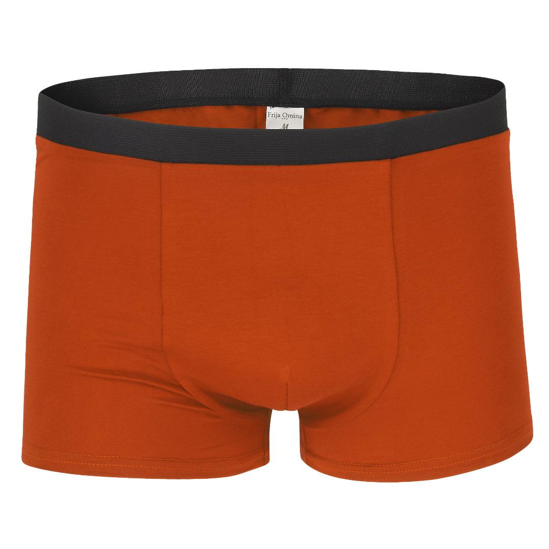 Bio Trunk Shorts Retro Shorts rost