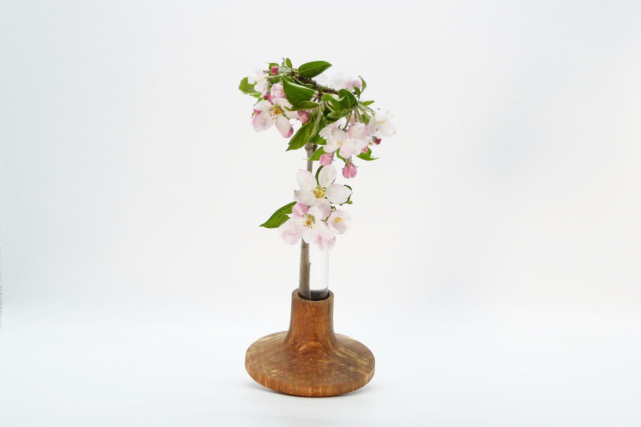 Vase mit Reagenzglas 8