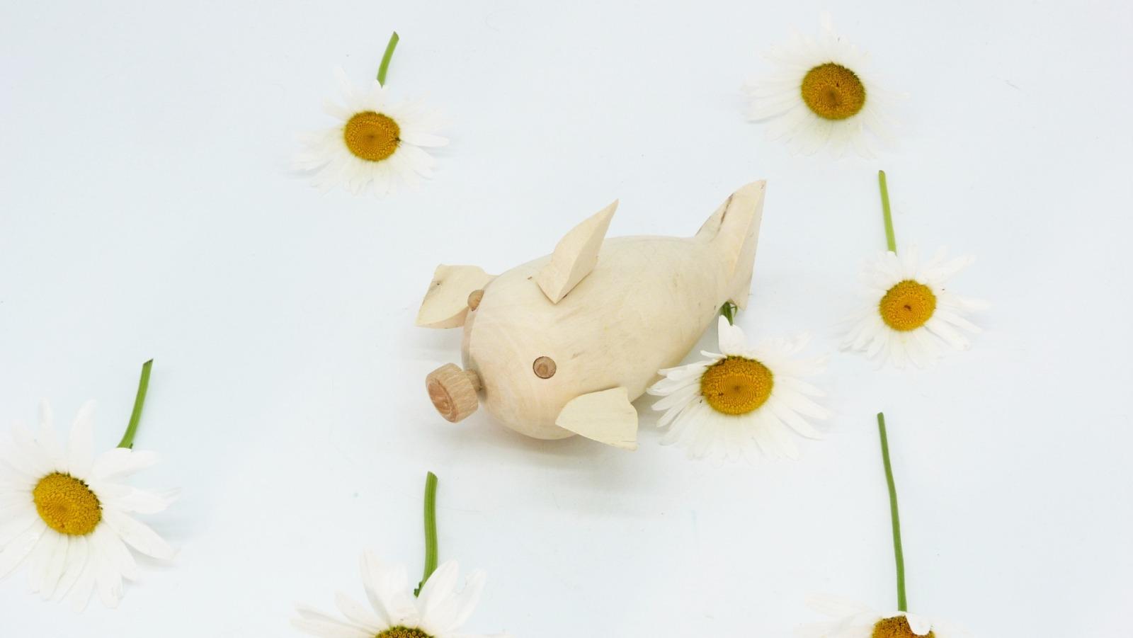 Holz Fisch Pigfish 12