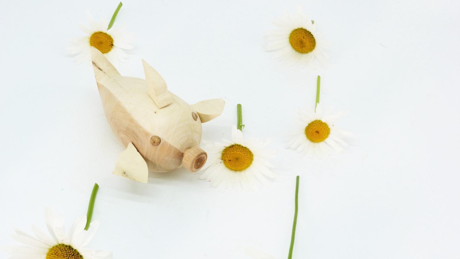 Holz Fisch Pigfish 13