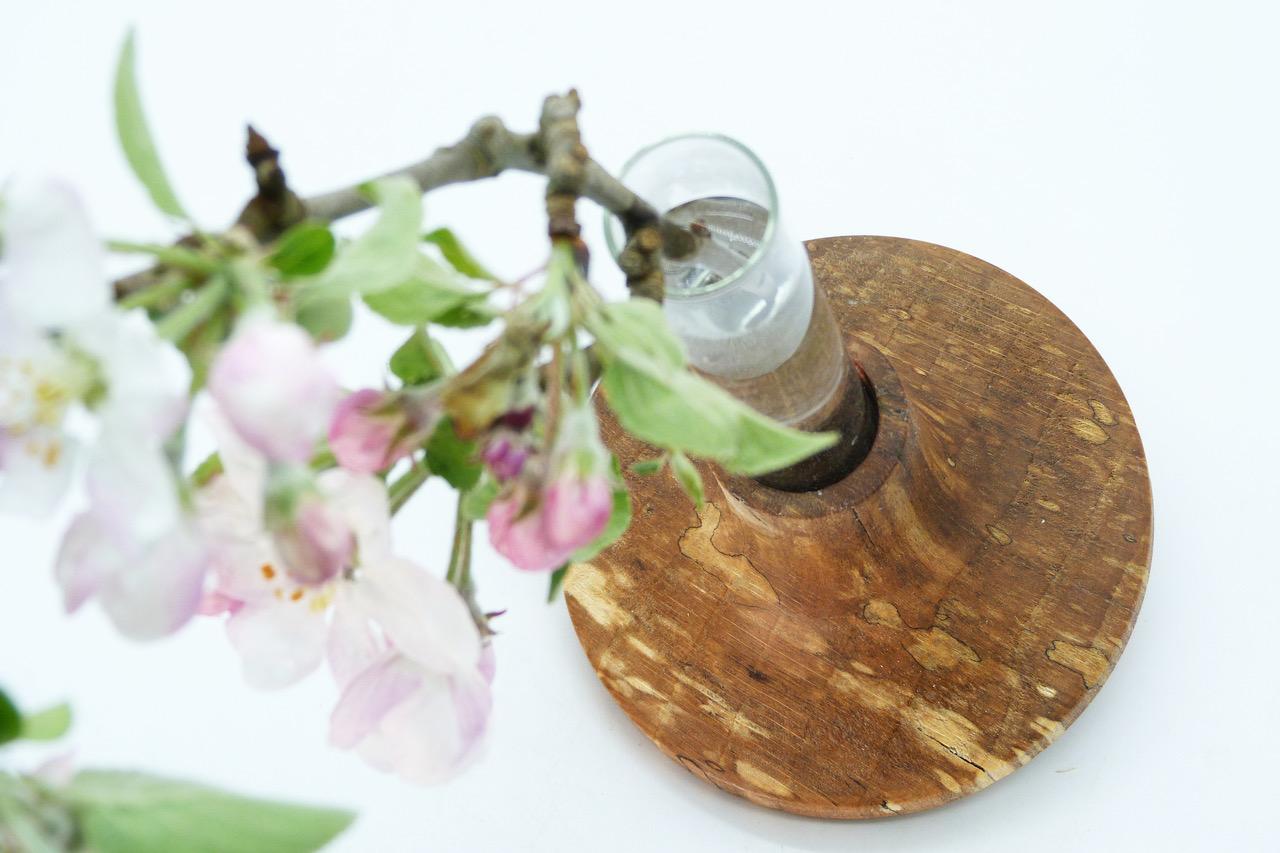 Vase mit Reagenzglas 2