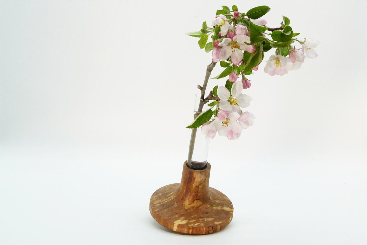 Vase mit Reagenzglas 13
