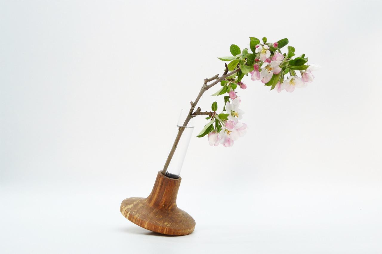 Vase mit Reagenzglas 12