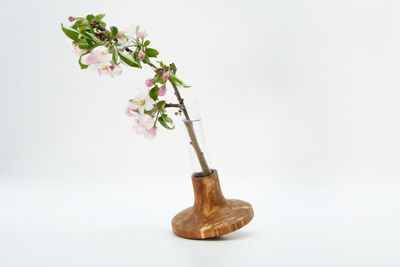 Vase mit Reagenzglas 11