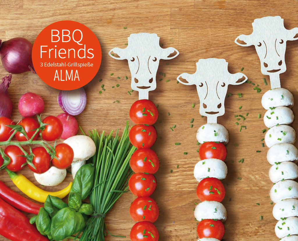 BBQ Friends 2x3 Grillspieße