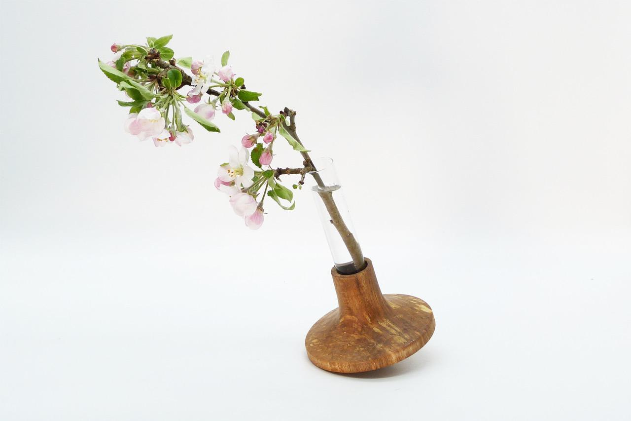 Vase mit Reagenzglas 9