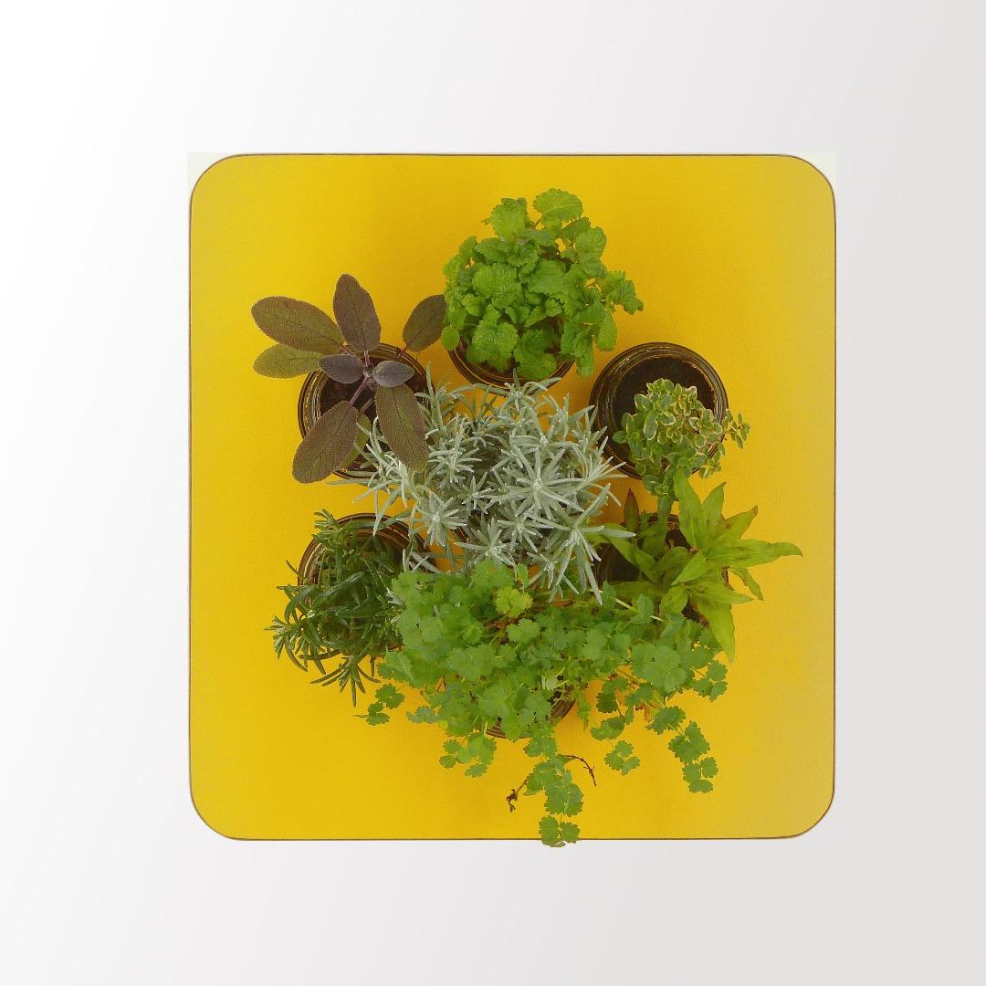 Gewürzregal Holz gelb orange 13
