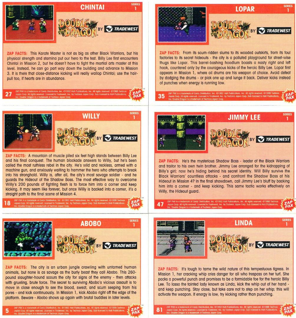 Nintendo NES - Double Dragon 2