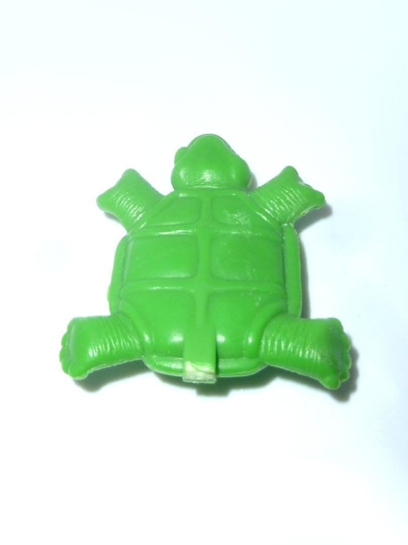 Schildkröte Schwanz abgebrochen 2