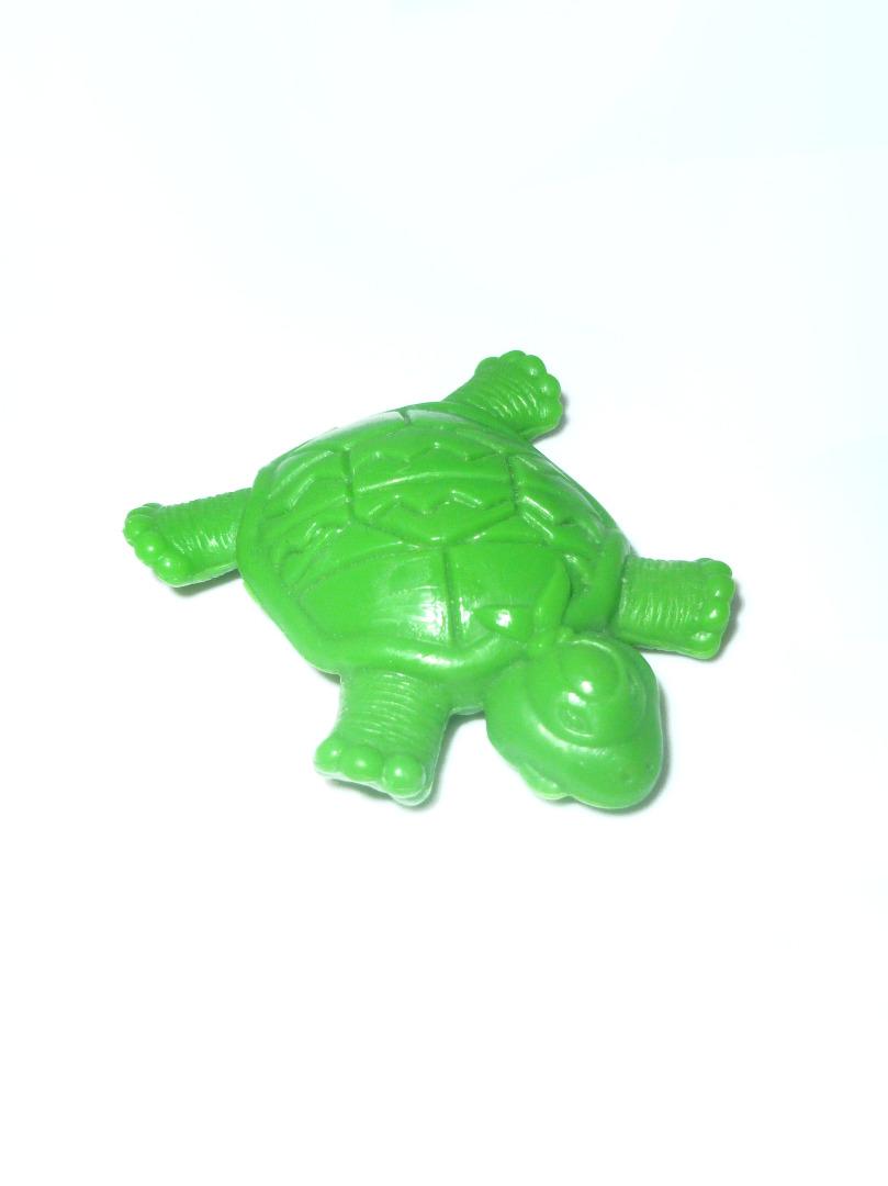 Schildkröte Schwanz abgebrochen