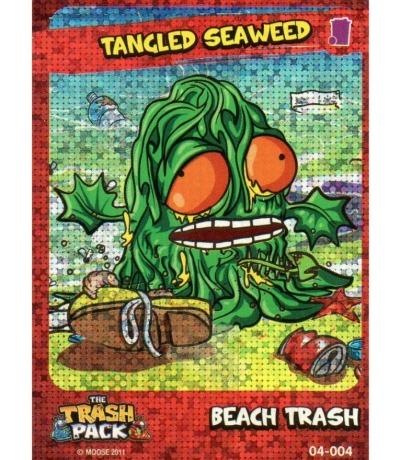 Tangled Seaweed Beach Trash The Trash