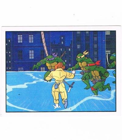Panini Sticker Nr Teenage Mutant Hero